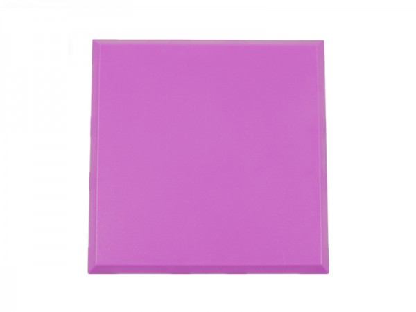 ALLNET Brick'R'knowledge Carcasa violeta 2x2 Pack de 10uds